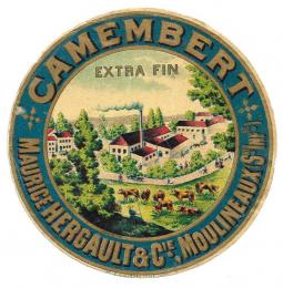 Camembert_6