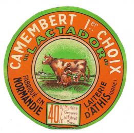 Camembert_3